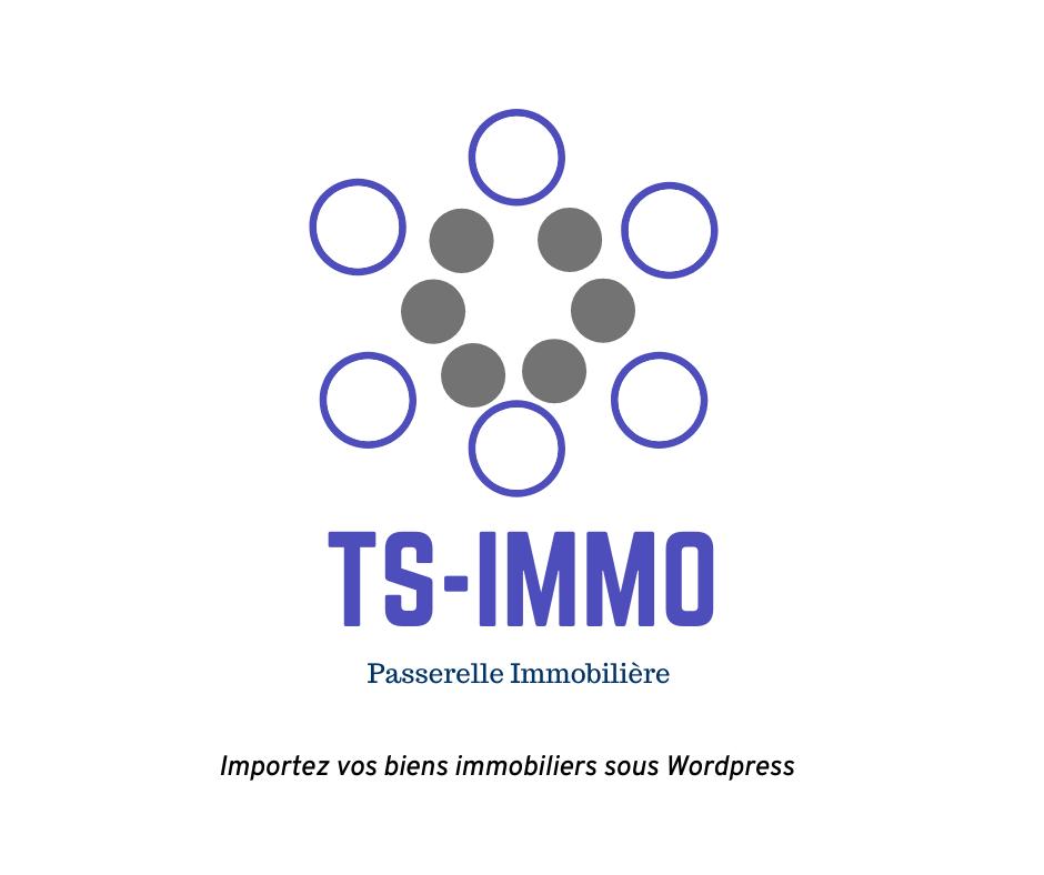 Ts Immo Logo